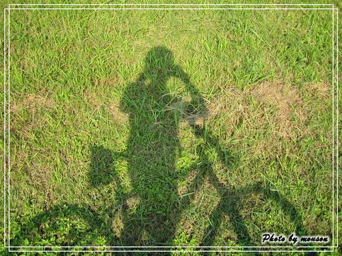 綠地配影子 挺美的